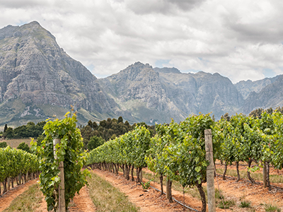 stellenbosch-law-trust-mountains